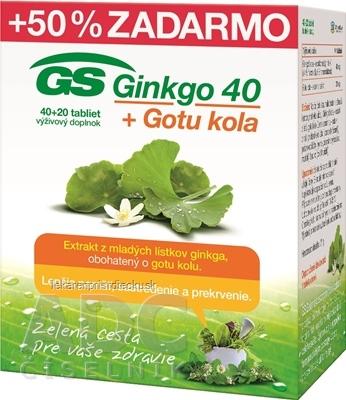 GS Ginkgo 40 + Gotu kola tbl 40+20 zadarmo (60 ks)