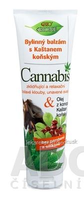 BC BIO Cannabis Konský bylinný balzam 1x300 ml